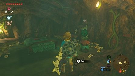 Breath Of The Wild Walkthrough Great Hyrule Forest Zelda S Palace