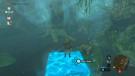 Breath of the Wild walkthrough - Great Hyrule Forest - Zelda's Palace