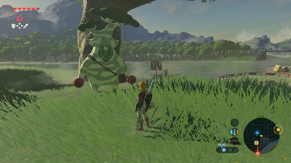 enlargement of the pouch Breath of the Wild