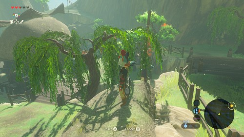 side quest Flown the Coop in Breath of the Wild