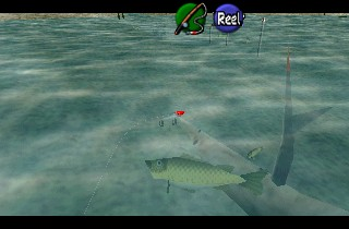 Complete guide to the hyrule loach no sinker lure zelda.