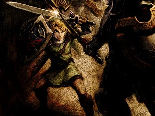 Link is fighting in Twilight Princess